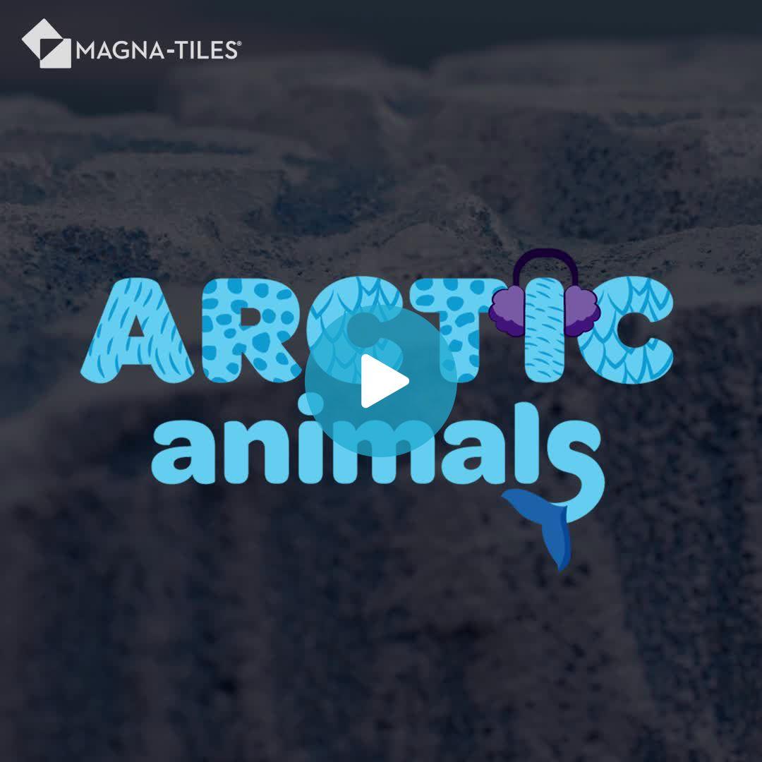 Arctic Final 1_1x1